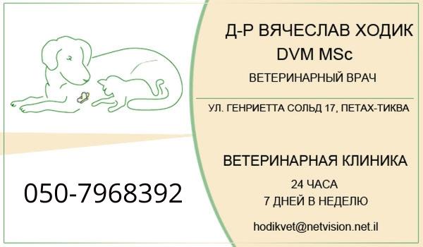 Ветеринарная клиника в Петах Тикве д-ра Вячеслава Ходика. Ветеринар в Петах Тикве.