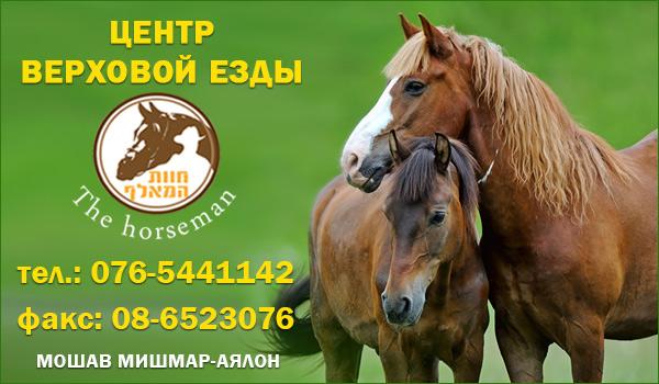 Центр верховой езды в Израиле. Обучение верховой езде в Израиле. Катание на лошадях в Израиле. Прогулки на лошадях в Израиле.