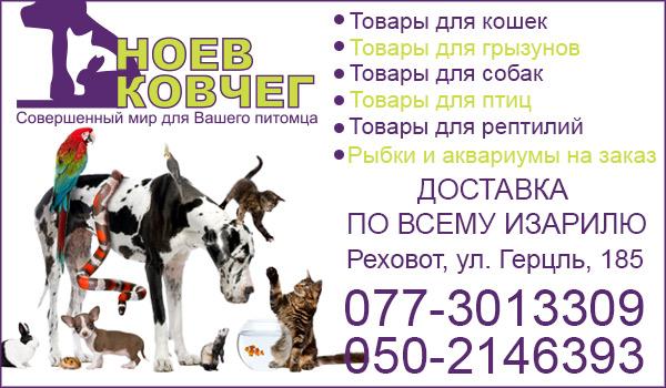 Зоомагазин в Реховоте. Корм для кошек в Реховоте. Корм для собак в Реховоте. Аквариумы в Реховоте.
