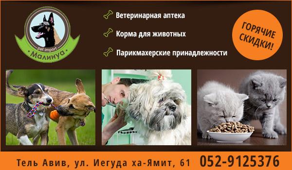 Зоомагазин в Тель-Авиве. Корм для собак в Тель-Авиве. Корм для кошек в Тель-Авиве. Аксессуары для животных в Тель-Авиве. Товары для животных в Тель-Авиве.