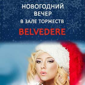 Новогодний вечер в зале торжеств Бельведер.