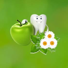 Стоматолог в Ариэле д-р Лея Вайнерман Сегаль. Лечение зубов в Израиле. Стоматологи Израиля. Протезирование зубов в Ариэле.