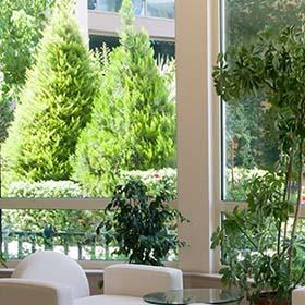 Ландшафтный дизайн в Израиле. Услуги садовника в Израиле - Мати Наваро